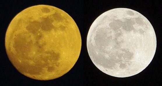 月とスーパームーン比較画像