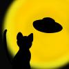 番外編!猫と月とアダムスキー型UFOのフリーイラスト