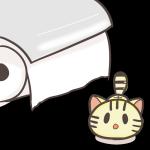 危険な香り…トイレットペーパーを見つめる子猫のフリーイラスト(茶トラ)