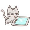 たった15秒だが千年分可愛い!自分の尻尾を食べようとする子猫動画
