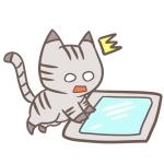 ニギャイにゃ~♪猫の薬の飲ませ方