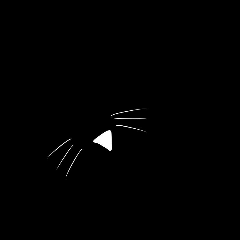 これが至福の時!子猫が見上げておねだりタイムなシルエット画像
