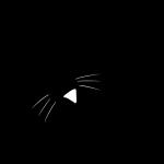 人類滅亡レベルの至福の時!子猫が見上げておねだりタイムなシルエット画像
